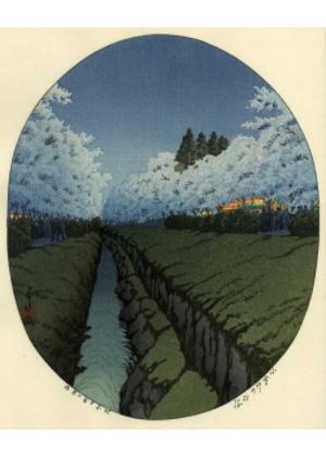 H-80 小金井の夜桜