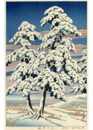 HKS-5 松の雪晴