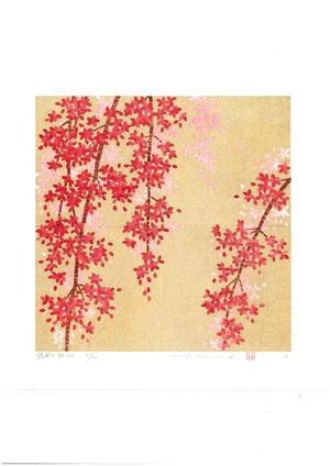 並木 一 枝垂れ桜22