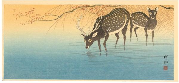 小原祥邨(古邨) 水辺の鹿(三切判)